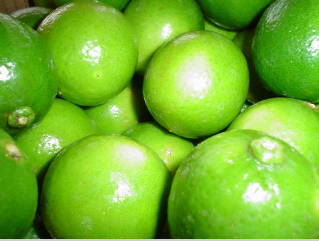 Limão Prevenção Contra Doenças – Remédio Poderoso na Viscosidade Sangüínea.