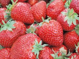 Receita de vitamina de iogurte com morango. Fruta