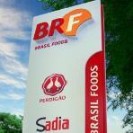 Vagas de estágio Sadia 2013 – Inscrições e como Participar