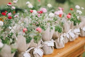 lembrancinha-casamento-plantas