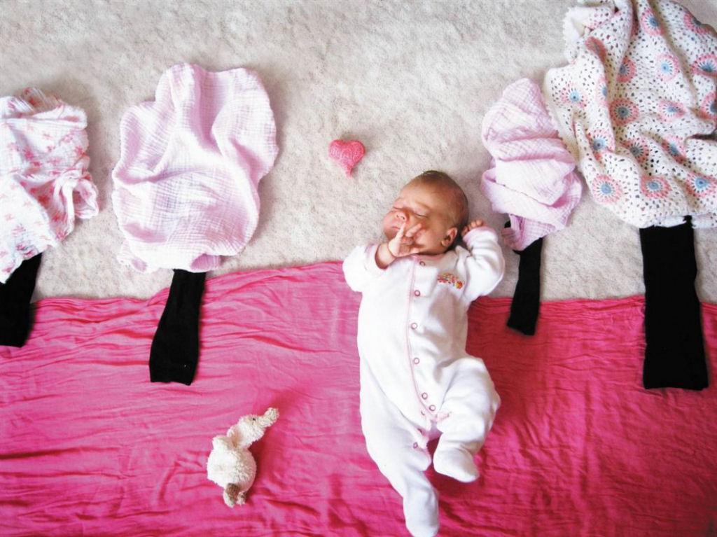 bebe-arvores