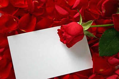 carta-de-amor