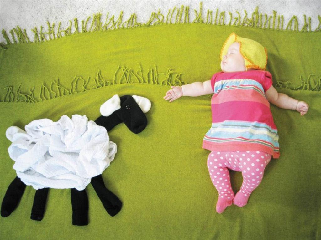 foto-bebe-ovelha