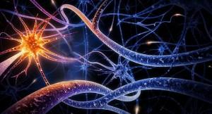 Uma Nova Descoberta Pode Levar à Cura do Alzheimer – Veja Pesquisa