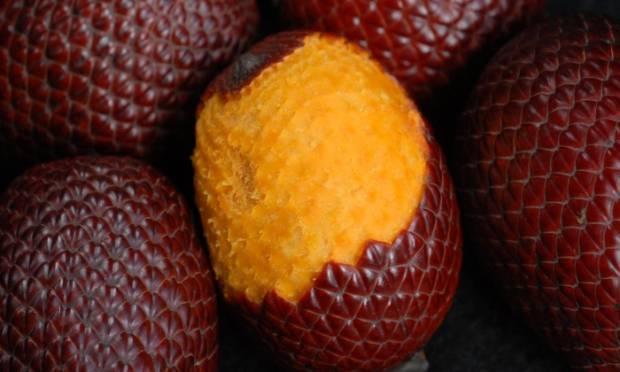 frutas-exoticas-buriti-miriti