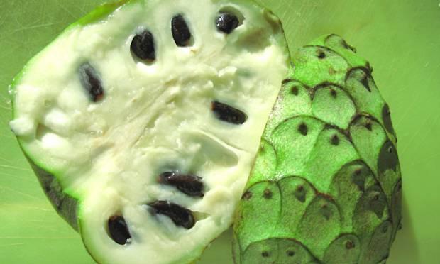 frutas-exoticas-cherimoia