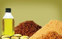 Benefícios da Linhaça na Alimentação – Quais São e Como Consumir