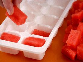 Receitas Práticas com Formas de Gelo – Dicas