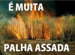 foto-whatsapp-palha-assada
