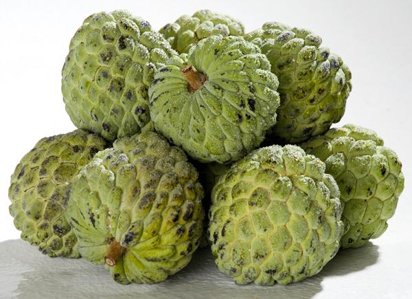 fruta-outono-pinha