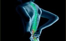 Posturologia – O Que é, Avaliação e Tratamento.