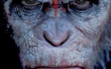 Filme Planeta dos Macacos: O Confronto – Sinopse, Elenco e Trailer