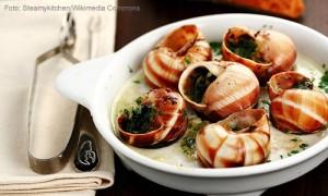 comida-francesa-escargot