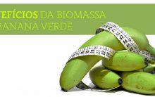 Biomassa de Banana Verde – Benefícios e Receita