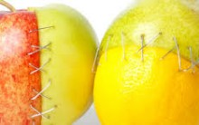 Alimentos que Ajudam na Cicatrização – Quais São