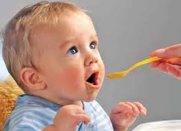 Os Primeiros Alimentos na Dieta do Bebê – Como Fazer e Dicas