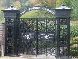 Jardim Venenoso do Castelo de Alnwick – Ponto Turístico, Plantas e Fotos