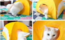 Barraquinha de Gato – Materiais, Passo a Passo e Vídeo