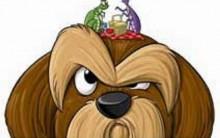Pulgas em Animais – Como Acabar Receita Caseira