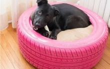 Cama de Pneus Para Cachorro – Como Fazer