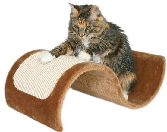 gatos-unhas-al