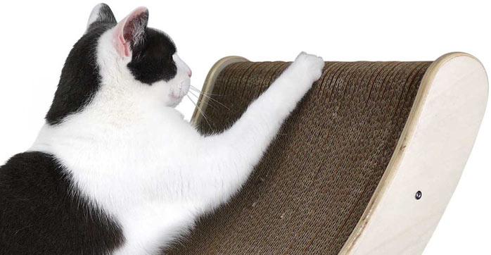 gatos-unhas