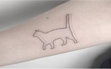 Tatuagens de Gato – Significados e Modelos