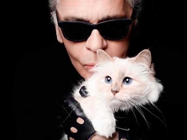 Riachuelo e Karl Lagerfeld -  Nova Coleção