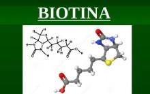 Biotina Vitamina – Benefícios e Onde Encontrar