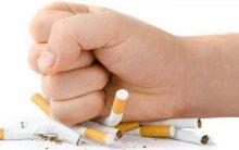Eliminar Nicotina do Corpo – Alimentos Que Ajudam