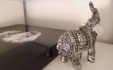 Animais na Decoração – Significados