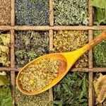 Ervas Medicinais – Como Escolher