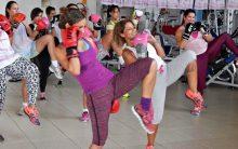 Muay Thai – Exercícios Em Academias
