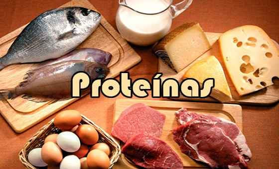 dieta-das-proteinas-o-corpo-ideal