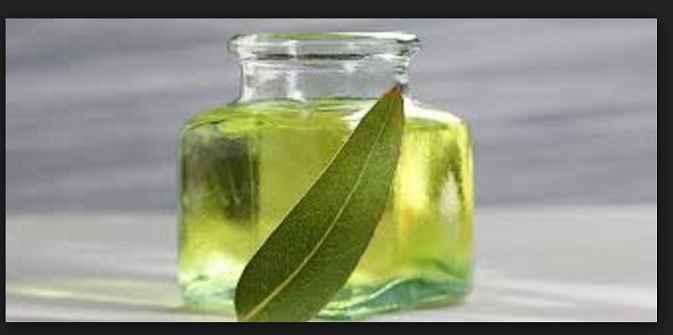oleo-de-eucalipto-beneficios