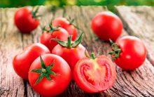 Tomate Cereja – Como Plantar