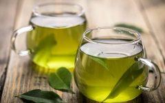 Chá de Oliveira – Benefícios