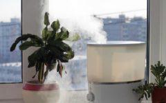 Umidificador de Ar Caseiro – Material e Como Fazer