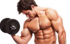 Aumentar a Testosterona – Benefícios e Dicas
