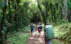 Fazer Trilhas no Brasil – Melhores Lugares