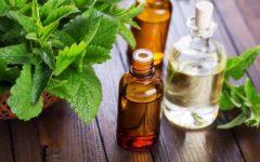 Shampoo de Hortelã – Benefícios e Receita Caseira
