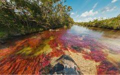 Rio Colorido no Interior da Colômbia – Turismo