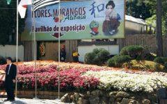 Festa das Flores e Morango – Ingressos